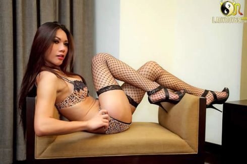 Thai ladyboy Eat in fishnet stockings and bra